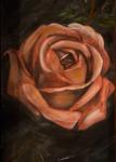 I AM (Rose Detail)