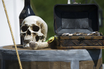 Skull & Box Display